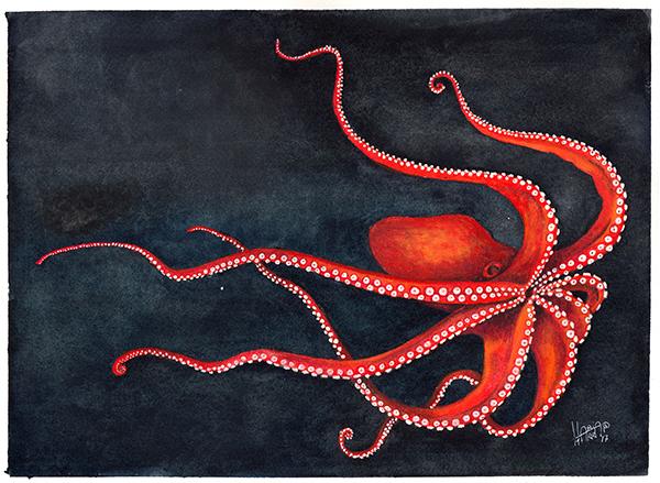polpo rosso in acqua a acquarello